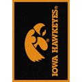 Milliken College Team Spirit (NCAA) Iowa 74218 Spirit Rectangle (4000019211) 5