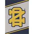 Milliken College Team Spirit (NCAA-SPT) Notre Dame 45881 Spirit Rectangle (4000053232) 2