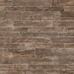 "Daltile Season Wood: Autumn Wood 24"" x 48"" Porcelain Tile SW03-24481P"