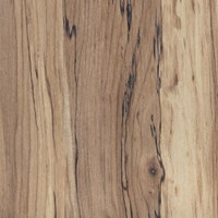 Mannington Coordinations Collection:  Natural Spalted Maple 8mm Laminate 56013L