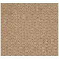 Capel Rugs Creative Concepts Raffia - Rectangle 9