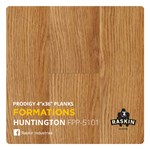 Raskin Elevations Prodigy: Huntington Luxury Vinyl Plank R-FPP-5101