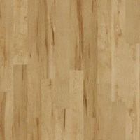 Shaw Salvador: Vancouver Birch 8mm Laminate SL078 137