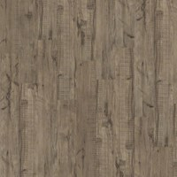 Shaw Array Easy Street Plank: Sagebrush Luxury Vinyl Plank 040VF 542
