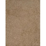 "Daltile Parkway: Brown 9"" x 12"" Glazed Ceramic Tile PK97-9121P2"