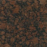 "Daltile Granite: Baltic Brown Polished 12"" x 12"" Natural Stone Tile G704-12121L"