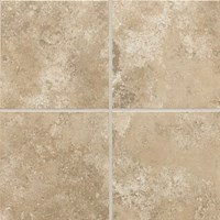 "Daltile Stratford Place: Willow Branch 12"" x 12"" Ceramic Tile SD9212121P2"