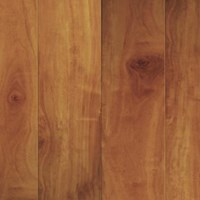 CFS Summer Isles Collection: Russet 8mm Laminate SI8096-2-AC3