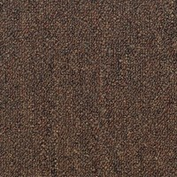 "Shaw Capital III: Land Slide 24"" x 24"" Carpet Tile 54480 80600"